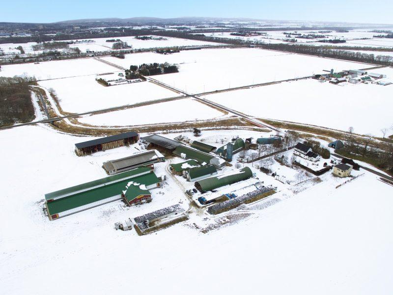 木谷牧場 全景写真(写真左:今回建築した搾乳ロボット牛舎)