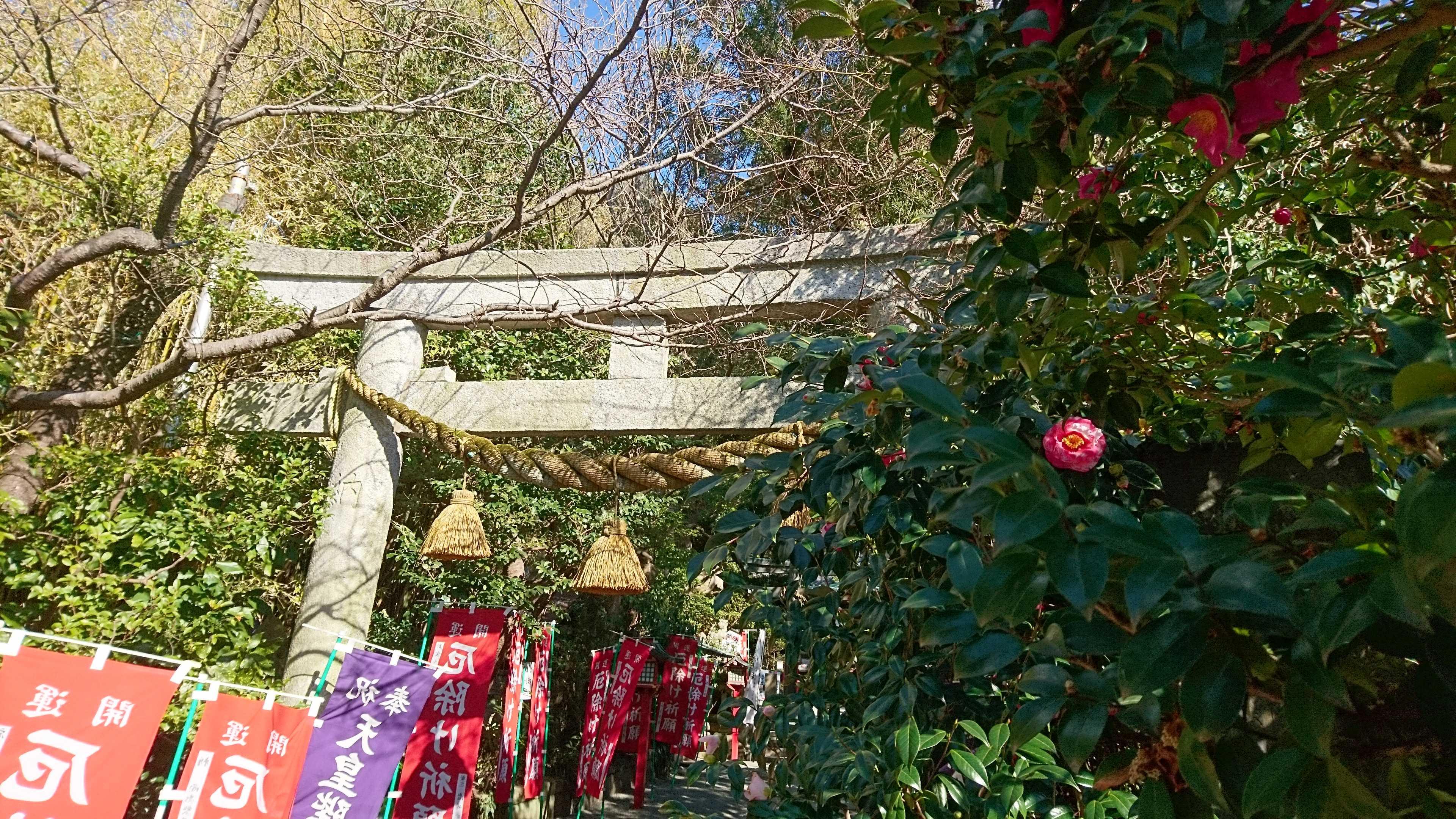 春の訪れを感じながら のんびり散歩を鎌倉で