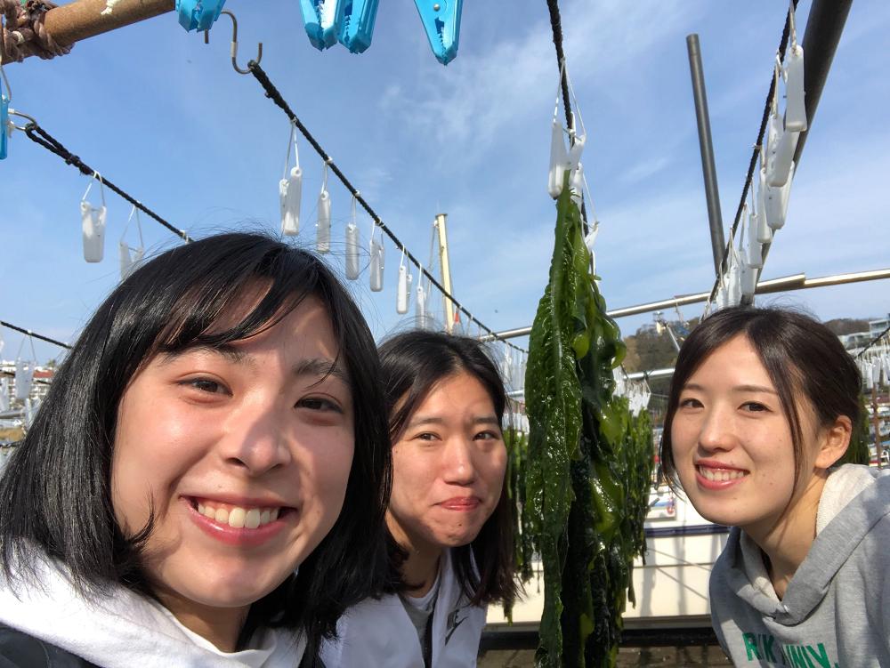 女子3人葉山旅―ときどきいや、ほとんどわかめー(後半)