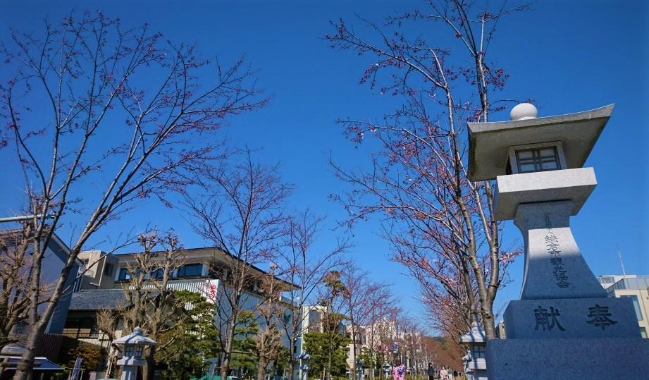 心地よい風に吹かれて 鎌倉散歩旅