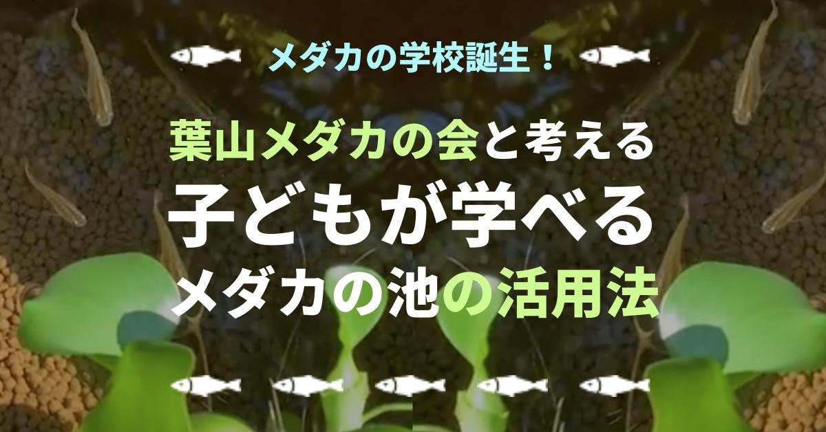 平野邸にメダカの学校誕生!!葉山メダカの会 今井さん清水さんと考える、子どもが学べる「メダカの池」の活用方法。