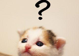 【ミュゼ】カウンセリングに身分証を持参し忘れた…。契約できないの?