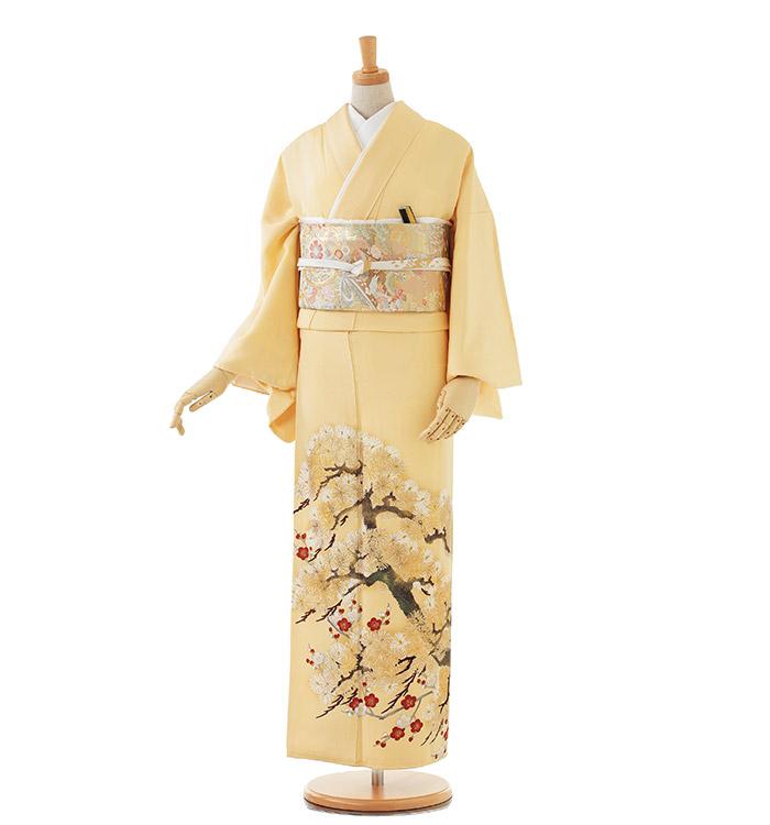 色留袖 No.DA-0131-Lサイズ