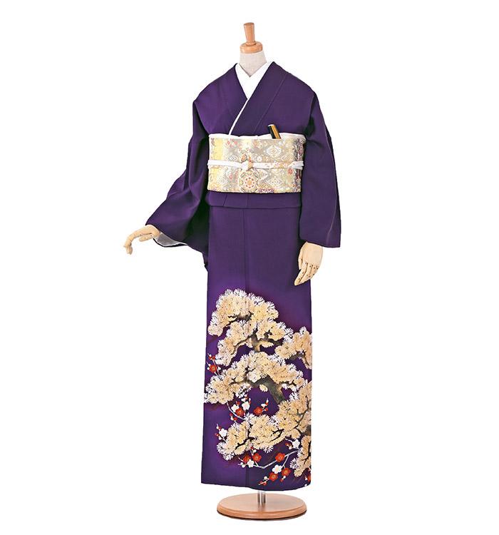 大きいサイズ 色留袖 No.DA-0140-MOサイズ