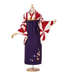 卒業袴 No.FE-0047-Lサイズ