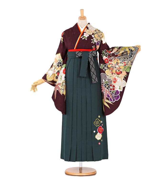 卒業袴 No.FE-0270-M