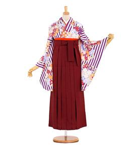 卒業袴 No.FE-0297-Lサイズ