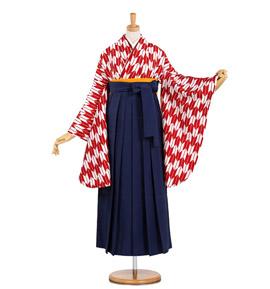 卒業袴 No.FE-0383-Mサイズ