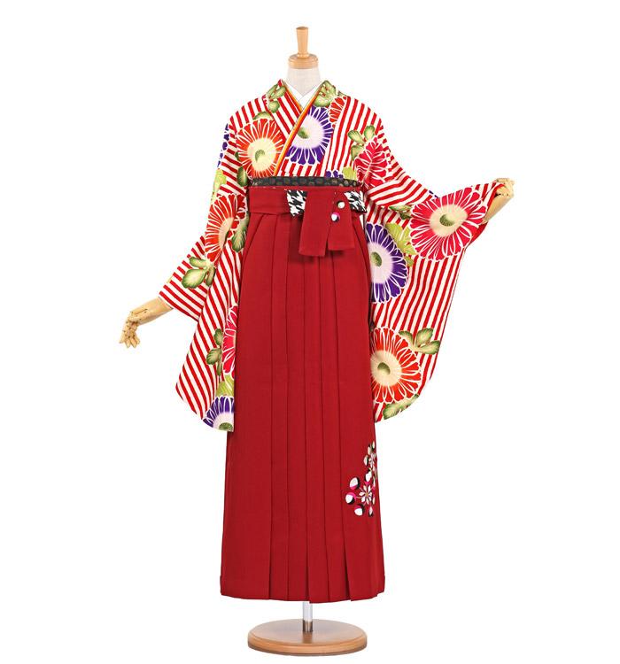 紅一点 卒業袴 No.FE-0517-L