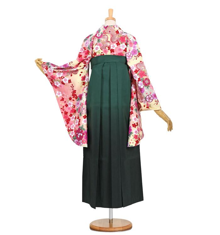 卒業袴 No.FE-0685-L_02