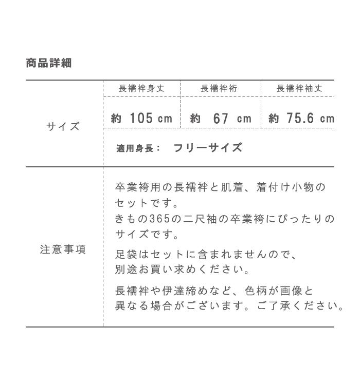 卒業袴用【2,000円以上お得!】長襦袢・肌着がついた着付け小物9点セット No.5ZA-0105_13