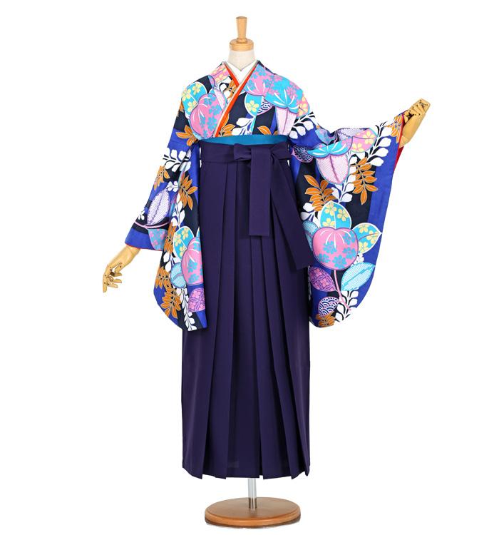 卒業袴 No.FE-0956-Lサイズ