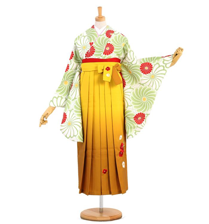 卒業袴 No.FE-0976-Sサイズ