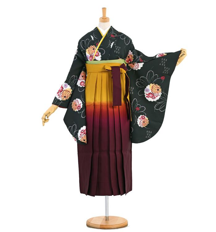 卒業袴 No.FE-1291-Sサイズ