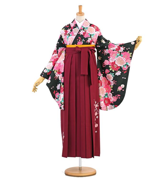 卒業袴 No.FE-1364-Lサイズ