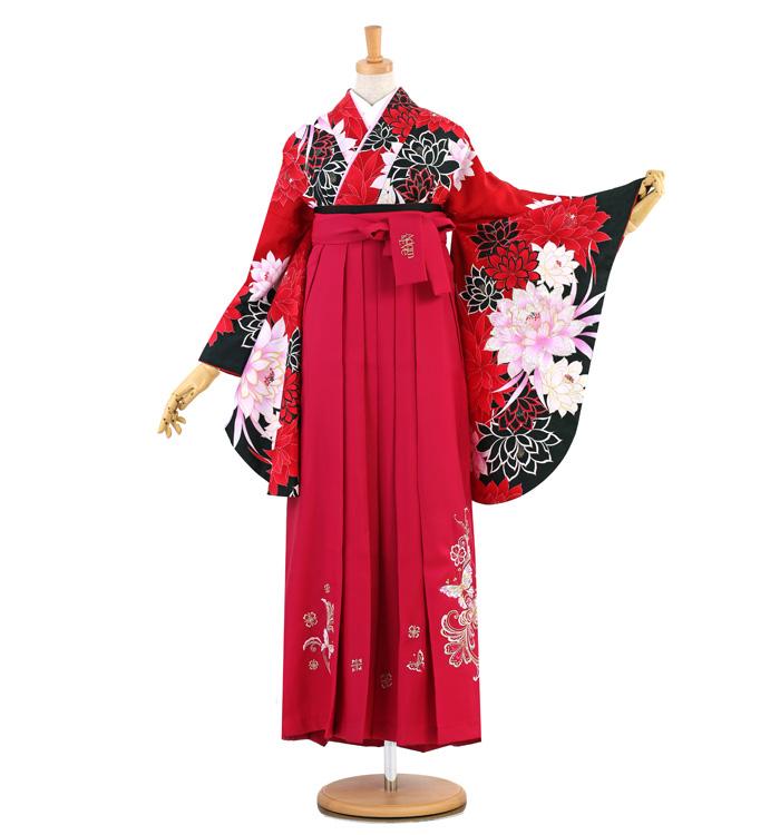 卒業袴 No.FE-1365-2Lサイズ