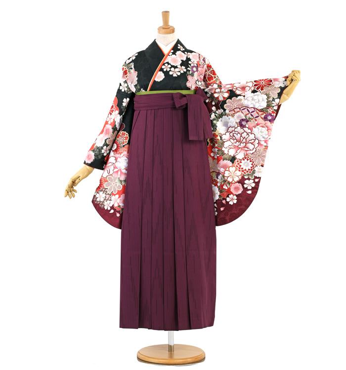 卒業袴 No.FE-1376-Lサイズ