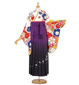 山本彩 卒業袴 No.FE-1402-2Lサイズ