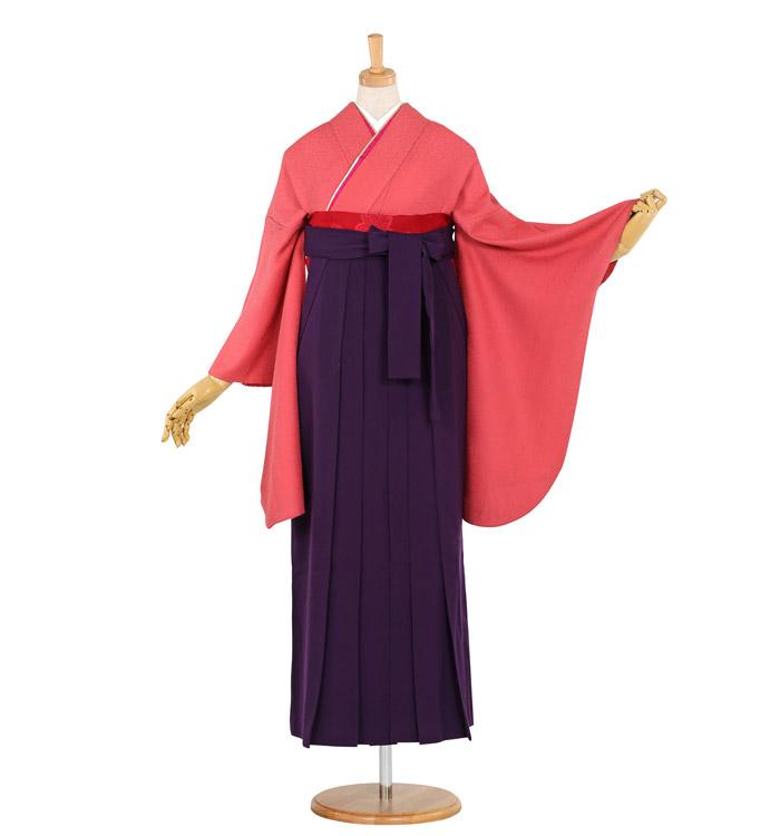 卒業袴 No.FX-0778-Lサイズ