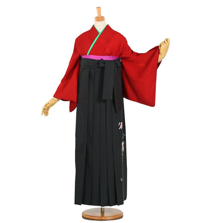 卒業袴 No.FX-0784-2Lサイズ/○