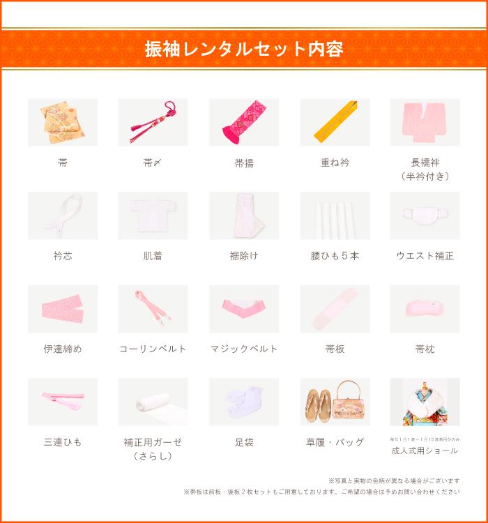 トールサイズ 振袖 No.EA-0056-LLサイズ/○_16