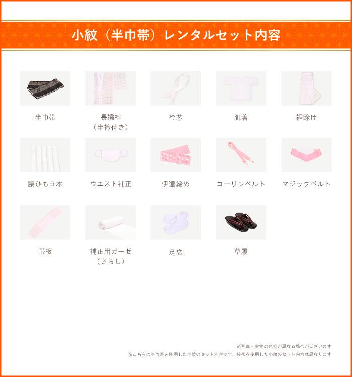 小紋 No.IA-0014-Mサイズ_16