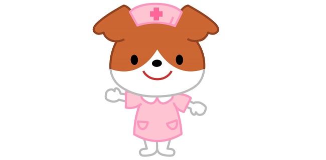専門看護師の仕事内容と必要な資格【看護ケアのスペシャリスト】