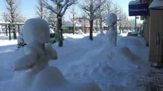 恵庭の冬の素敵なイベントをご紹介