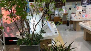 オバラメガネメガドンキホーテ函館店