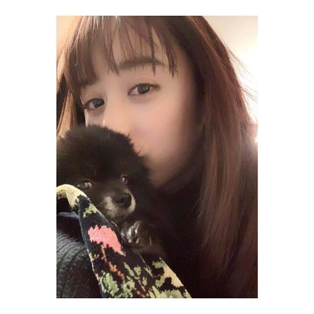 """MIZUKI YAMAMOTO on Instagram: """"スマホの画面にたくさん線が入ってて、写真の色が分からない……来週修理してもらうから、それまで我慢…目が悪くなりそうだ(´×ω×`) #kotsume"""" (621792)"""