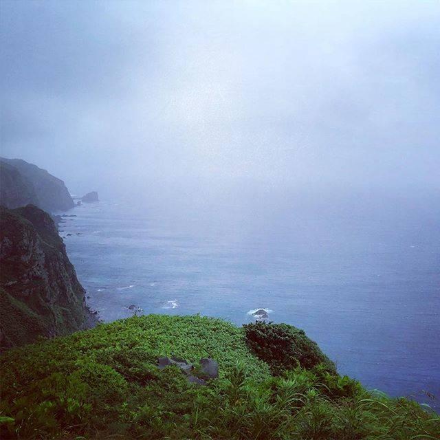 """Yukinori Otsuka on Instagram: """"グランドネイチャーフォトツアー最終日。 天売島・観音岬。 昨夜の赤岩展望台付近での、ウトウの80万羽の帰巣は圧巻でした。 ウミネコに襲われる個体もいるなか、  ビュンビュンと間近で飛び込んで行く姿は、なかなか被写体として収めるのは難しい! #天売島 #観音岬 #teuri…"""" (882056)"""