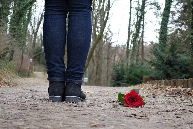 Red Rose On The Floor Love Sad · Free photo on Pixabay (56745)