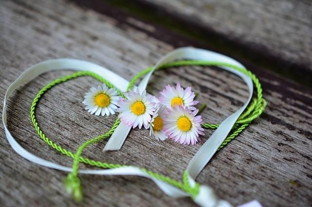 Daisy Heart Romance Valentine'S - Free photo on Pixabay (105157)