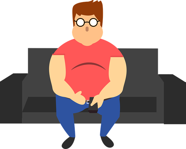 Man Fat Sofa - Free vector graphic on Pixabay (129421)