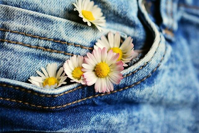 Pocket Daisy Jeans - Free photo on Pixabay (187059)