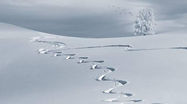 Wintry Backcountry Skiiing Ski - Free photo on Pixabay (202766)