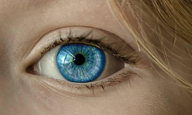 Eye Blue Iris - Free photo on Pixabay (213830)