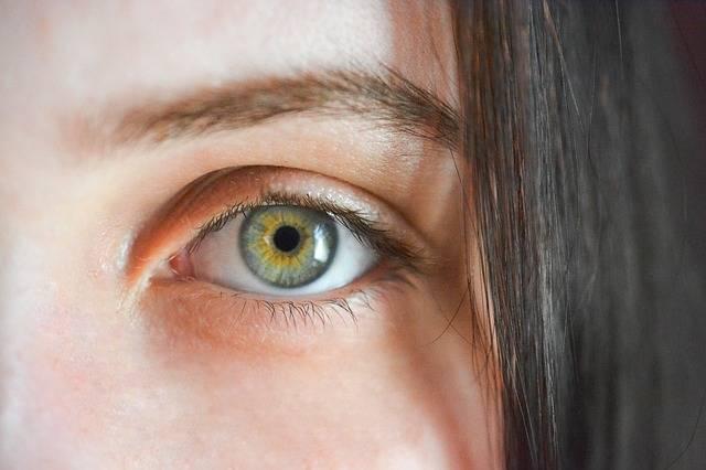 Eye Iris Algae - Free photo on Pixabay (216268)