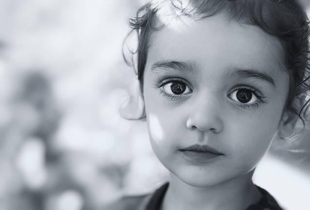 Model Face Portrait - Free photo on Pixabay (254084)