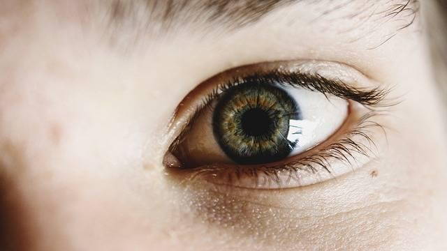 Eyes Green Child - Free photo on Pixabay (304622)