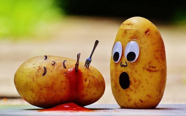 Potatoes Ketchup Murder - Free photo on Pixabay (310483)