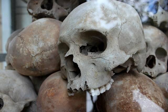 Skulls Genocide Murder - Free photo on Pixabay (311463)