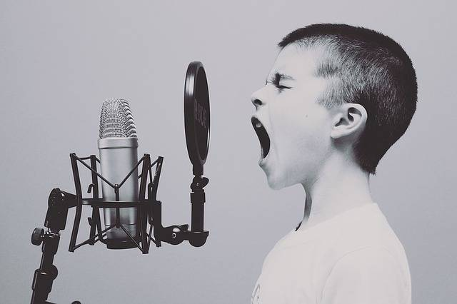 Microphone Boy Studio - Free photo on Pixabay (323064)