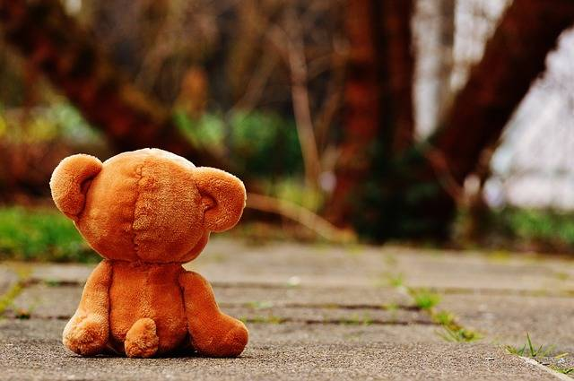 Bear Teddy Lonely - Free photo on Pixabay (330420)