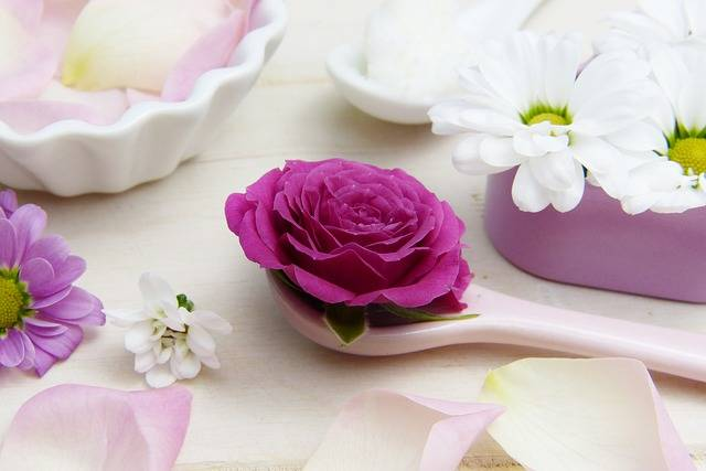 Rose Pink Spoon Shea - Free photo on Pixabay (337700)