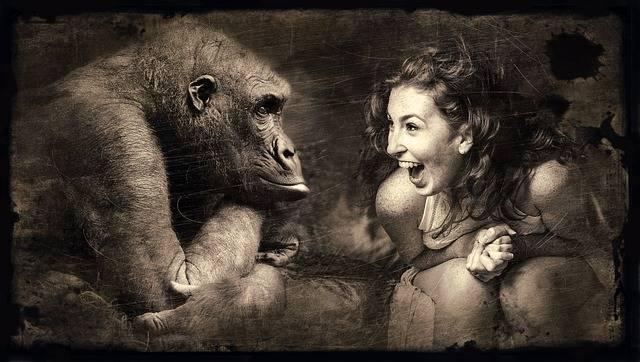 Composing Monkey Woman - Free photo on Pixabay (339282)