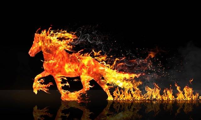 Fire Horse Running Wastage - Free photo on Pixabay (343691)