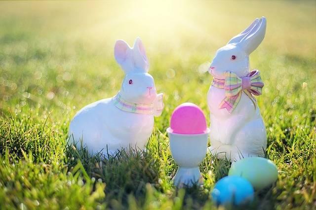 Easter Bunnies Rabbits - Free photo on Pixabay (343735)