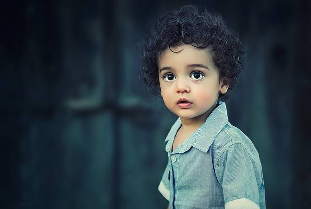 Child Boy Portrait - Free photo on Pixabay (346716)