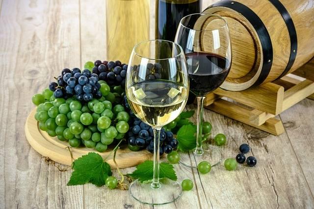 Wine Glass White - Free photo on Pixabay (351052)